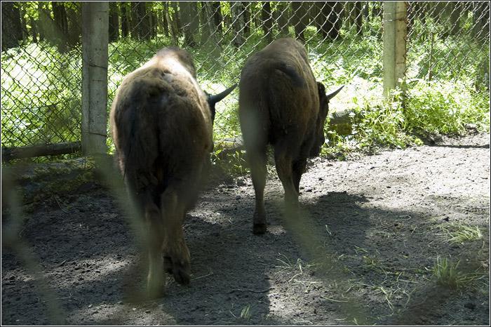 Приокско-Террасный государственный природный